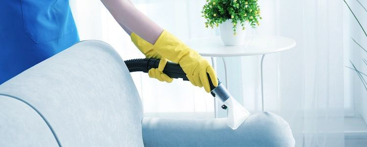 Best Upholstery Cleaning Modbury