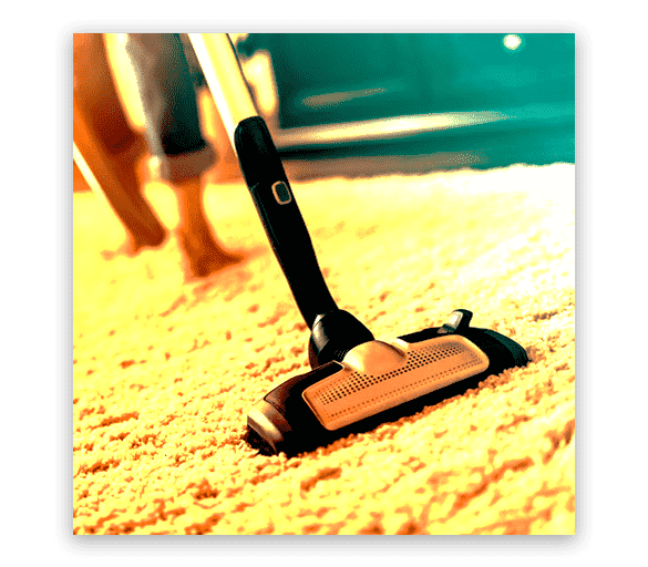 Professional Carpet Cleaning Modbury
